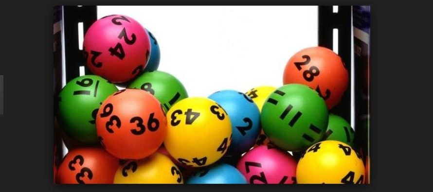 Allambie Heights Lottery syndicate proves to really have good lotto luck